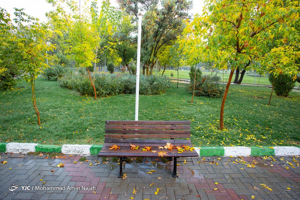 ترنم باران پائیزی در همدان