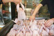 انباشت مرغ در واحدهای مرغداری /قیمت هر کیلو مرغ به ۱۲ هزار و ۵۰۰ تومان رسید