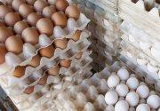 تخممرغ رسماً ۱۵ درصد گران شد/گرانفروشی ۳ هزار تومانی در بازار