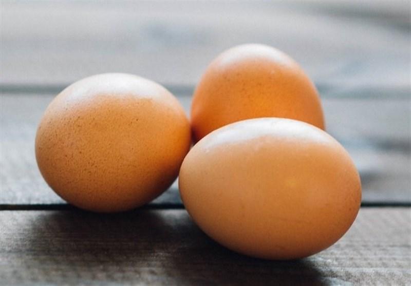 قیمت هر شانه تخم مرغ ۳۰ هزار تومان کاهش یافت