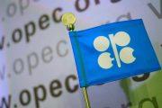 تولید نفت باید فورا کاهش یابد/افت بیشتر نرخ نفت در آینده نزدیک