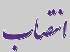 انتصابات جدید در بانک ایران زمین