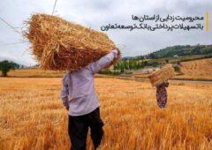 محرومیت زدایی از استان ها با تسهیلات پرداختی بانک توسعه تعاون