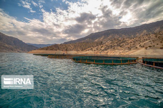 برنامههای حمایتی وزارت جهاد از طرح پرورش ماهی در قفس