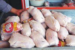 تقاضای مردم برای خرید مرغ ۷۰ درصد کاهش یافت