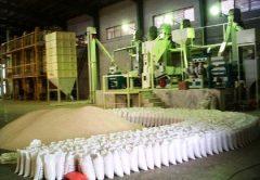 ثبات قیمت برنج مازندران ناشی از رویکرد حمایتی دولت است