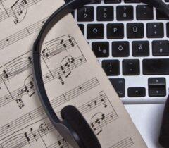 فضای مجازی را نباید مجال عرض اندام آماتورهای موسیقی کرد
