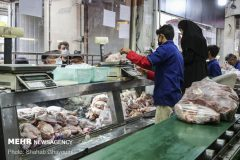 کاهش قیمتها با توزیع مرغ گرم در بازار
